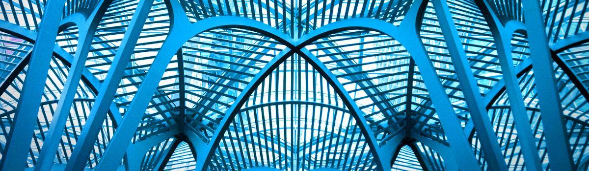 Calatrava. La forza visiva delle strutture