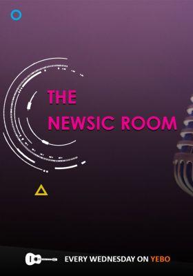The Newsicroom