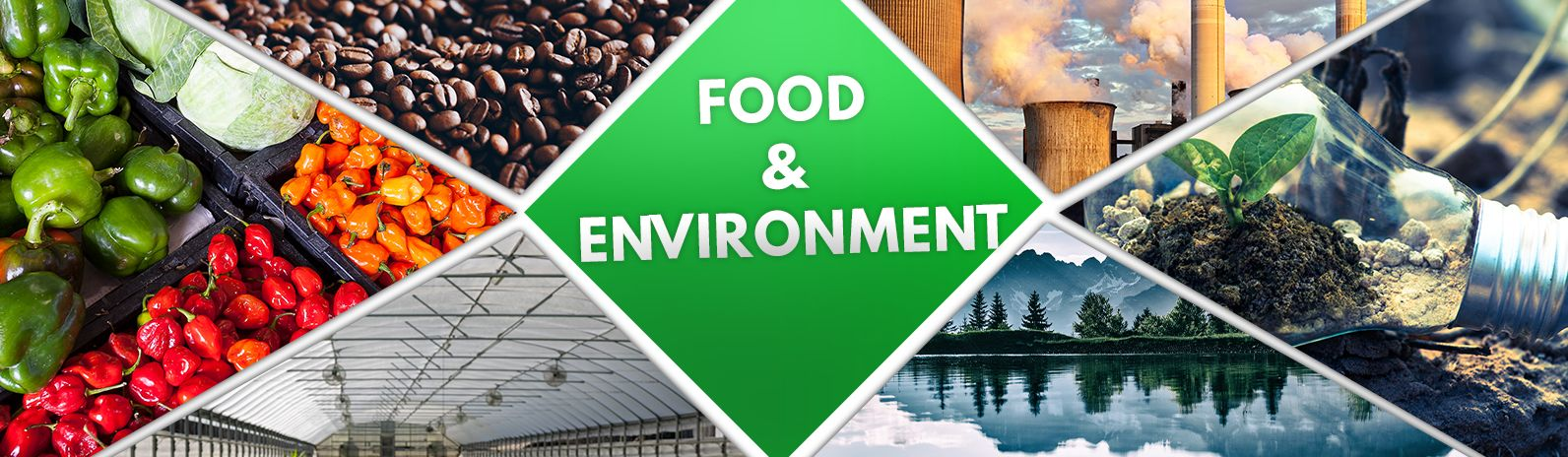 Food and Environment: