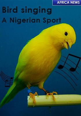 Nigeria Bird Singing Sport