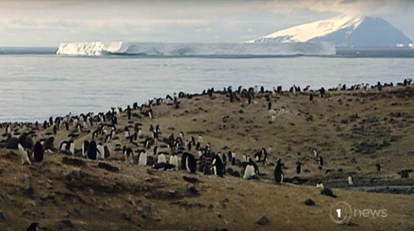Antarktis smälter snabbare än befarat