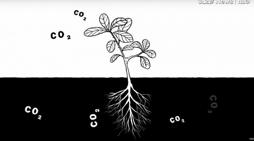 Farmen som odlar bort klimathotet
